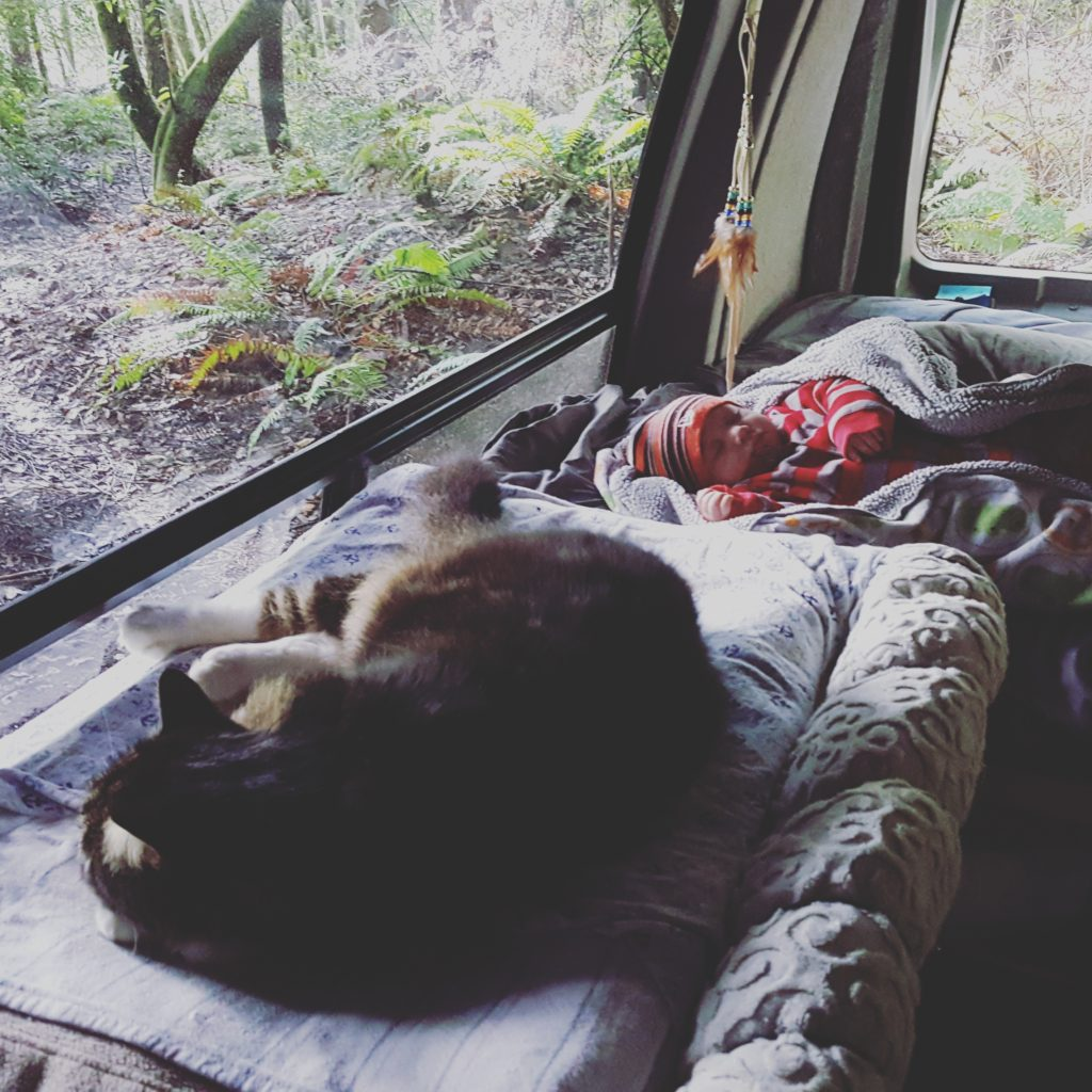 Making the move to live in a van and travel