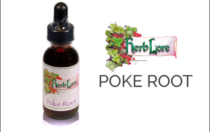 Poke Root Remedy for Mastitis